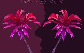 Two Friends Out of Love Tropix Oxilo Remix - Neon Owl